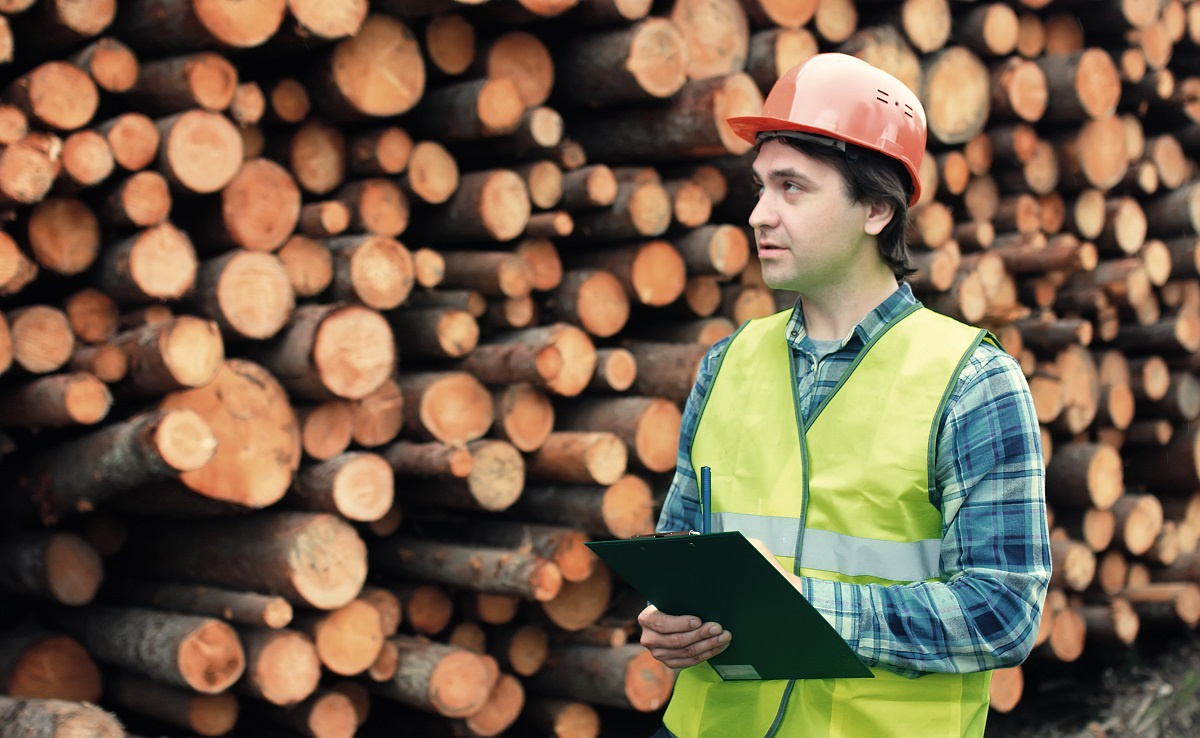 worker in logging sector | in-demand jobs in Canada in 2020